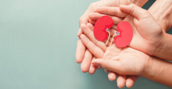 Adult and child's hands holding a kidney shaped paper